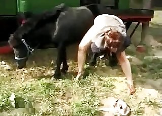 Spectacular ebony horse fucking her wet cunt